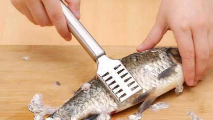 Stainless Steel Fish Scale Remover Scraper